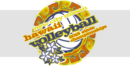 2015-volleyball-banner